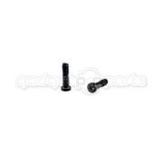 iPhone 5 Pentalobe Screws (Black) (10 pack)