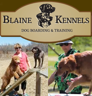 blaine-kennels