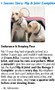 PawMedX Hip & Joint Support for Animals, Projessional Formula, Cat & Dog Support, Nutritional Support, Dietary Supplement for Dogs and Cats, Cartilage, Joint, Synovium Fluid, Arthritis, Joint Pain, Hip Discomfort, Hip Pain, Happy Dog and Cat, Healthy Bones and Joints, Animal Torn ACL, Tendon Support, Run Strong