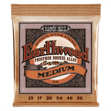 Ernie Ball Strings - Earthwood PB 13-56