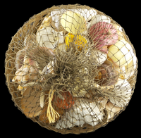 Shell Filled Basket