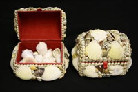 Shell Jewelry Box • Rectangle