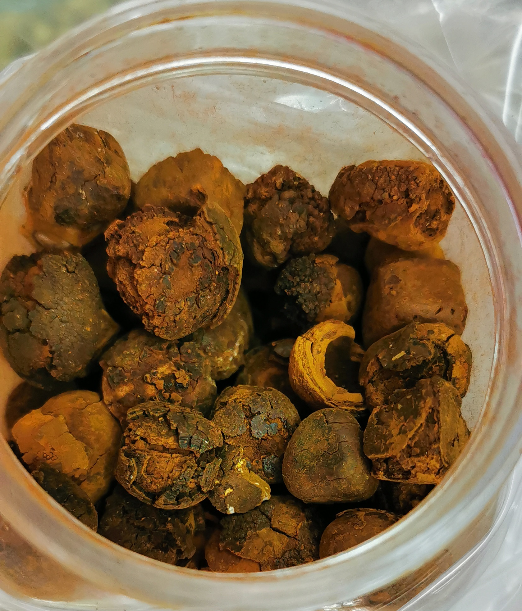 ox-gallstones.jpg