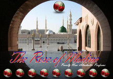 Rose of Madinah 3cc