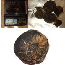 Mongolian Wild deer musk pod skin 3.6 grams