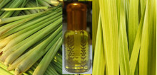 Premium LemonGrass oil - pure (24cc) (Burma origin) - free shipping
