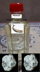 Premium Whitish AMBERGRIS oil-non alcoholic (12cc)
