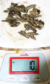 Agarwood/Aloeswood Oud,  Malaysia 10 grams