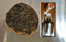 MUSK: Tonkin wild deer musk oil fragrance - non alcoholic(12cc)