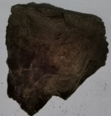 Agarwood/Aloeswood Oud chips, Burma 1 piece 15 grams Mushroom