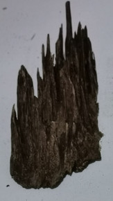 Agarwood/Aloeswood Oud chips, Burma 1 piece 22 grams  Iron gate