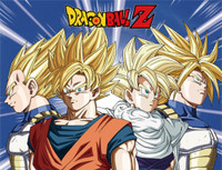 Dragon Ball Z: Super Saiyan Z Warriors Sublimation Throw Blanket