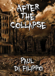 After the Collapse (ePub)