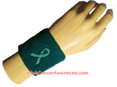 Teal Athletic 2.5 inch Youth Sport Sweat Wristband