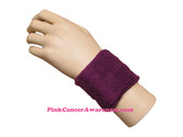 Purple Athletic 2.5 inch Youth Sport Sweat Wristband