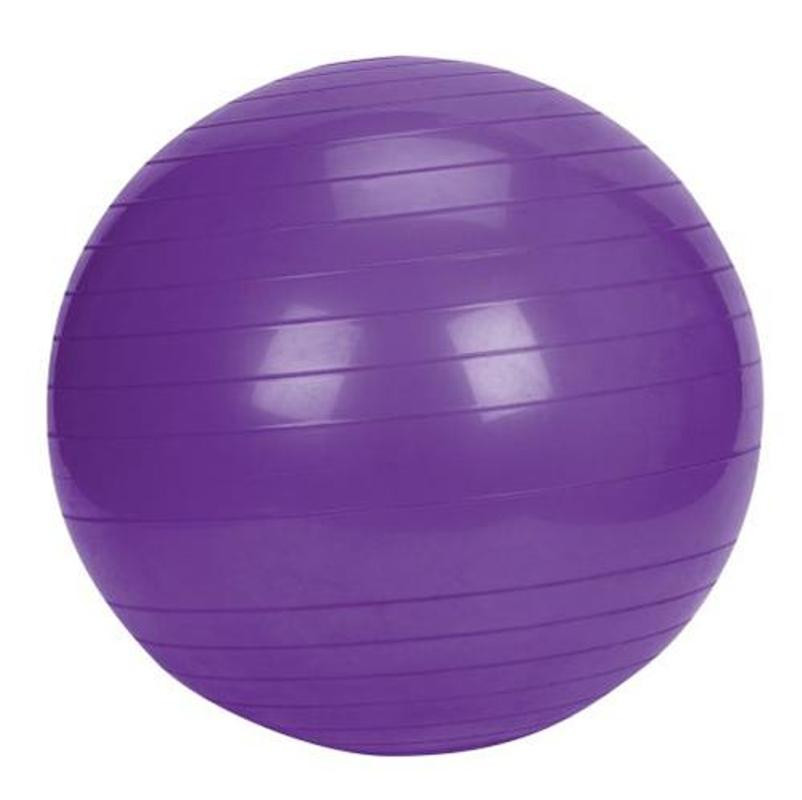 Stability Ball With Pump 65cm Purple Image 1