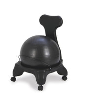 Sivan Health and Fitness Back Rest Balance Ball Chair with Ball and Pump