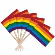 100 count - Rainbow Gay Pride Flag Toothpicks - LGBT Pride Home Decor and Party Supplies