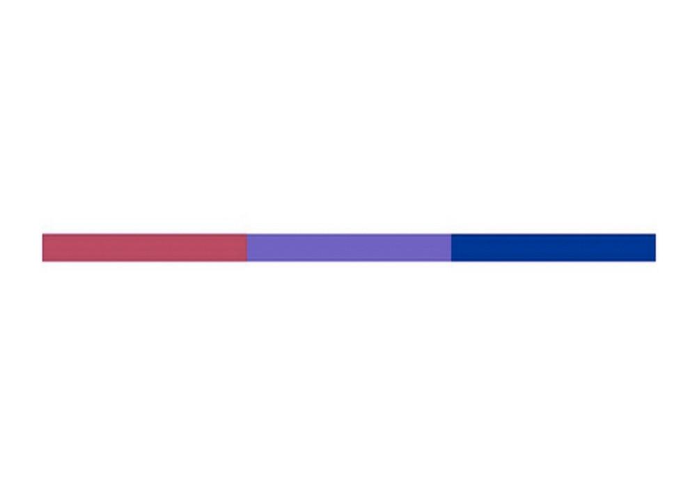 Bisexual  Bi Pride Banner Strip Sticker Decal - 05X28 -5037