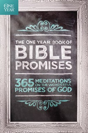 One Year Book Of Bible Promises