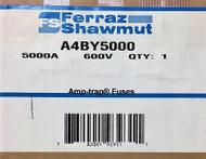 FERRAZ SHAWMUT A4BY5000 5000A FUSES SKU 789