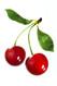 Cherry e-juice by Velvet Vapors