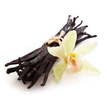 Organic French Vanilla e-juice by Velvet Vapors