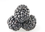 Blackberry (Organic) 50mL SALE!!