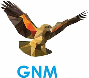Glenn N Martin Ltd