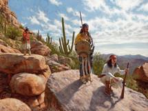 Sentinels Of The Sonoran Desert