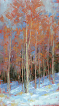 The Color of Winter Aspens
