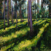 Lodgepole Pine Shadows Features long shadows cast through a deep pine forest. Painted by James Ayers