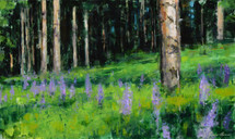 Purple Lupines Among the Pines Features a small forest meadow decorated with purple lupines. Painted by James Ayers