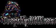 DropShipHair