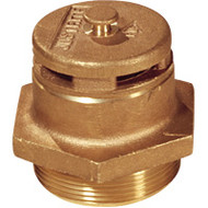 "DA607 Drum VentsBrass2"" NPT"