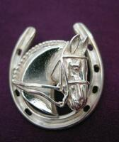Sterling Silver Dressage Horse In Horseshoe Pin