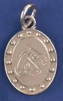 Sterling Silver Irish Sport Horse Breed Charm or Pendant