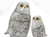 Snowy Owl, small