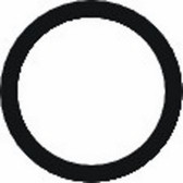 AELSTD2013  O-Ring