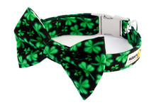 Clasp Collar with Bow Tie [Clover / Shamrock]