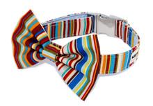 Clasp Collar with Bow Tie [Brighton Rock]