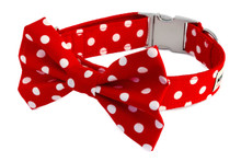 Clasp Collar with Bow Tie [Polka Dots Red]