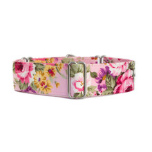 Martingale Collar [Wisley Pink]