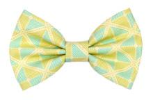 Bow Tie [Regatta]