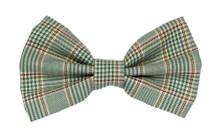 Bow Tie [Cambridge]