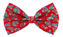 Bow Tie [Paisley Red]
