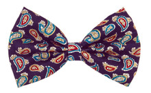 Bow Tie [Paisley Purple]
