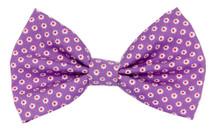 Bow Tie [Daisy Lilac]