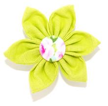 Flower [Peony]