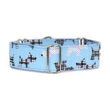 Martingale Collar [Scotties Blue]